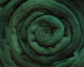 200g Acid Dyed Merino D'Arles Wool Top -  Forest