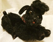 Vintage Collectible Steiff Black Jointed Mohair Poodle Dog with Red Collar Glass Eyes and Nose Measures 9 Inches Long in Reclining Position