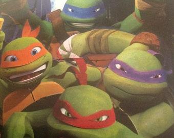 Ninja Turtle Plush throw