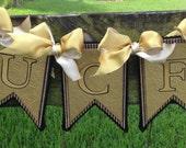 UCF Banner