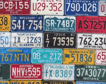 Timeless Treasures License Plates in Multi - Half Yard