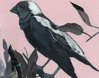 "Bobolink - bird art print, 6"" x 6"""