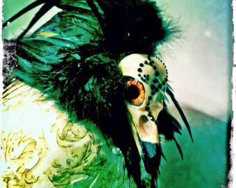 Haunted Head wear. Fake Crow Skull Fascinator Hat. Faux Taxidermy Hat. Halloween head wear