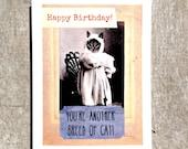 Anthropomorphic Cat card #46