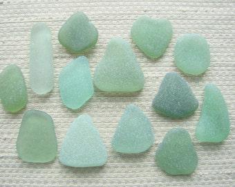 13 Mixed Green and Blue Green Mediterranean Pendant Size Sea Glass Treasures (SG1972) Mediterranean Sea Glass, Olive, Herb Garden shades