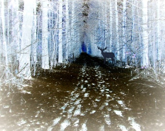 Digital Download Photography..Deer in a Magical Forest..printable wall art..spirit animal..shadow deer..man cave...rustic..cabin decor..blue