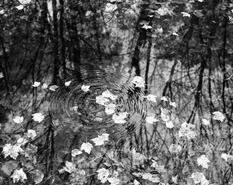 Nature Photography, Water Reflections, Rustic Wall Decor, Autumn Photo, Fall Leaves, Moody Art, Fine Art Photograph, Black and White, Grey