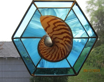 Natural Sliced Nautilus in Aqua Stained Glass