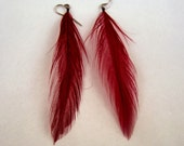 claret red Feather Earrings