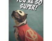 You're super! 5x7 pit bull blank card