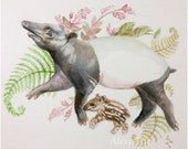 Tapir and Ferns painting watercolor