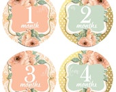 FREE GIFT, Baby Girl Monthly Stickers, Baby Month Stickers, Peach, Pink, Mint, Gold, Flowers, Watercolor Roses, Nursery Decor,