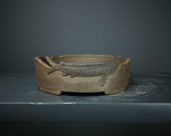 Fossil-Bed Bonsai pot