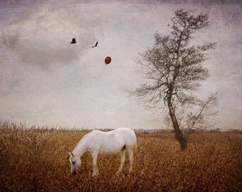 Nature surreal photo print horse, home decor wall art, bedroom kids room neutral pink gold balloon seasonal tree cottage whimsical rustic