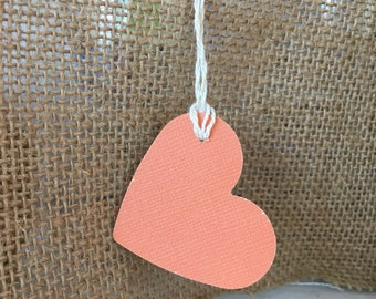 Coral Favor Tags Heart Shaped with White Gold Twine Wedding Tag Wishing Tree Tag Gift Tag Hang Tag