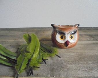Vintage Owl Head