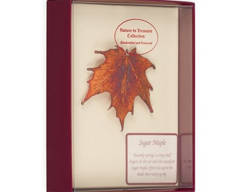 Real Sugar Maple Leaf Dipped In Iridescent Copper Barpin Brooches - Real Dipped Leaves