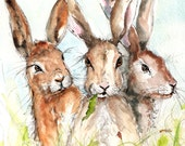 Hare Print- Illustration Painting - Watercolor Art -6x4 Print set in 8x6 mount- hare, farm, animal,modern,art, painting,country, rabbit