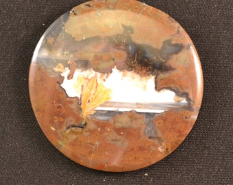 37mm round Priday Plume agate cabochon