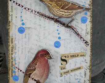 Tiny art collage, snarky bird art, 2D home decor