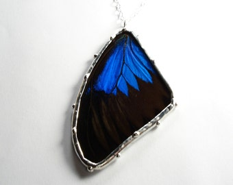 Real Butterfly Necklace, Blue and Black Butterfly Wing Pendant, Papilio Ulysses Necklace