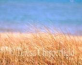 Ocean Photography, Summer Seascape Photo, Ocean View print, Beach Grass, Soft Bokeh, Blue Glistening Water, Coastal Print,Beach Cottage Chic
