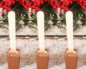 Coconut Hot Chocolate on a Stick