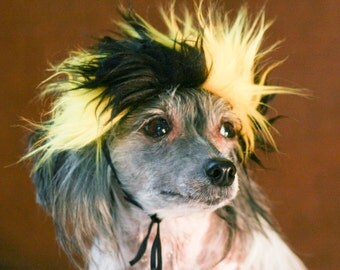 Small Black and Yellow Faux Fur Dog Costume Wig Hat