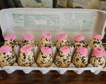 Dozen Eggs in Carton Organic Wild Bird Seed Feeder Ornament