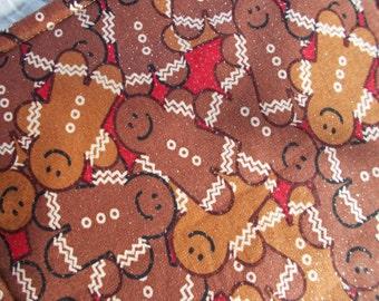 Gingerbread Men Hot Pad/mini quilt/pot holder