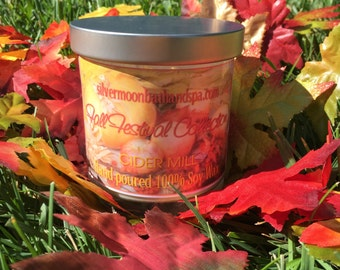 Hand Poured Soy Candles - Fall Festival Collection (6 pack)