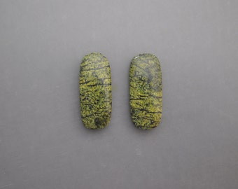 Serpentine Cabochon Pair