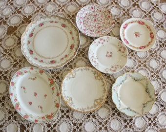 A Garden of Roses in Antique Porcelain 7 Platters and Plates
