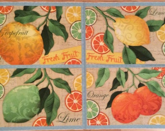 A Beautiful Citrus Grove Fresh Fruit Placemat Fabric Panel Free US Shipping
