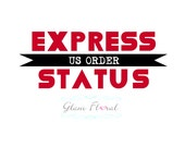 Express Status - US ORDER - Expedited Small Order with US Express Shipping Upgrade- rush order