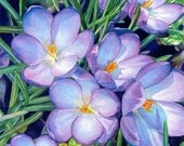 Giclee Print of a Watercolor Painting, crocuses, art, flowers, floral, garden, spring, archival, home decor, wall art, unframed, purple,blue