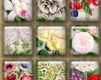 1 inch Digital Printable Squares BIG BLOOMS two collage sheets for Jewelry Pendants Magnets Crafts…Antique Botanical Altered Art