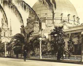 RPPC Palace of Horticulture PPIE Unused Vintage  Real Photo Postcard