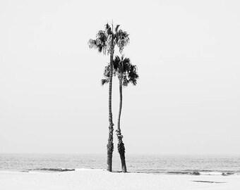 "Black And White Beach Art, Palm Tree Print, Minimalist, Gray White Decor, Beach Landscape, Palm Tree Print, Dorm Room Decor, ""Two Palms"""