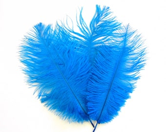 SALE Turquoise  Ostrich Feathers WAS 4.50 NOW 3.50