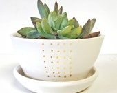 CUSTOM for Angela - 4 planters Terrarium garden home decor Handmade ceramic planter garden in white and gold succulent pot