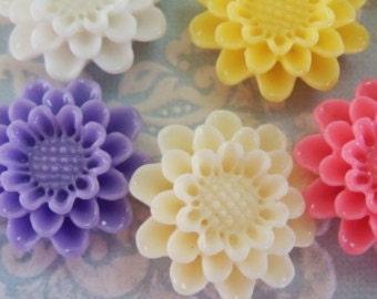 16pcs Daisy Flower Cabochon - Assorted Colours - Australia