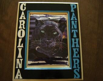 Carolina Panthers Football Sports Team Plaque