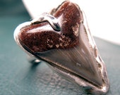 Shark Tooth and Sterling Silver Ring - Free Domestic Shipping to US