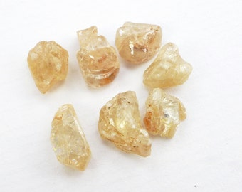 Natural Zircon Rough Crystals. Flat Back Ez Setting. Champagne Color. Diamond-like Luster. 7 pc. 23 cts. 7x8mm  (ZIR150)