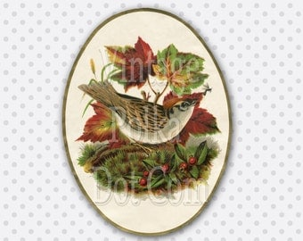 Vintage Clip Art Bird and Fall Leaves Red Berries Harvest Autumn Oval Shape Graphic Printable Art Print Victorian Digital Scrapbook