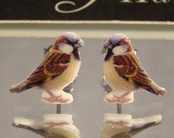 House Sparrow Stud earrings - Backyard Bird Jewelry