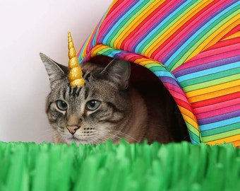 Magical Caticorn Trap for April Fools Day and Rainbow Cat Bed