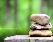 Woodland, Zen, Green, Nature Photography, Nature Photography
