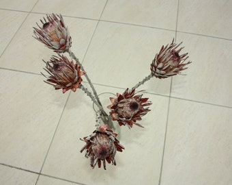 5 Natural Dry Protea Cynaroides - Dried King Protea for Weddings-Luck-Love-Romance and all other Matters of the Heart - for Flower Bouquet